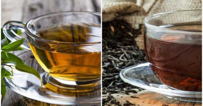 zielona czarna herbata