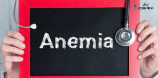 anemia niedokrwistość